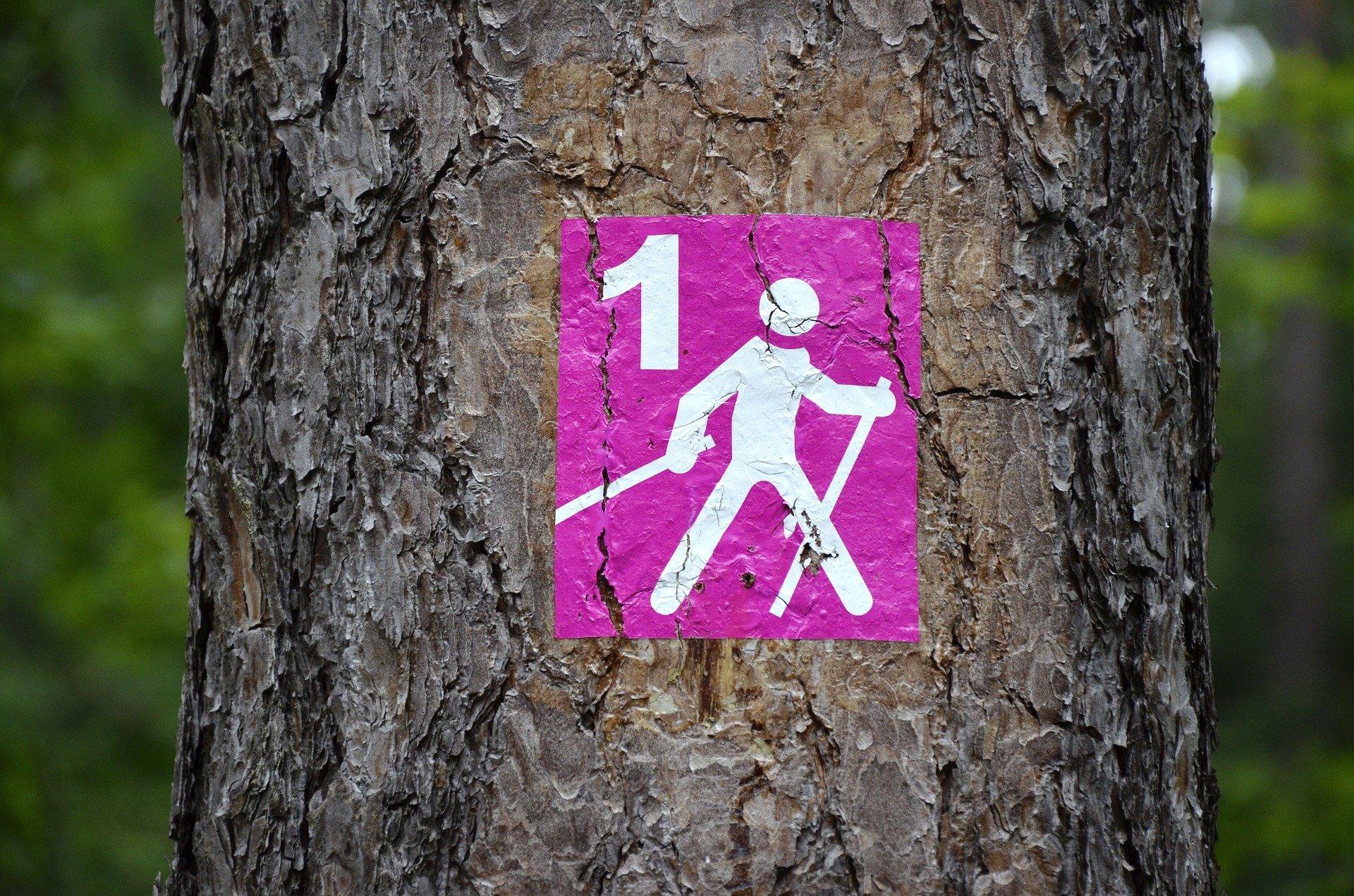 Manale NORDIC WALKING: la Tecnica