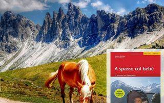 Escursioni con passeggino Alto Adige