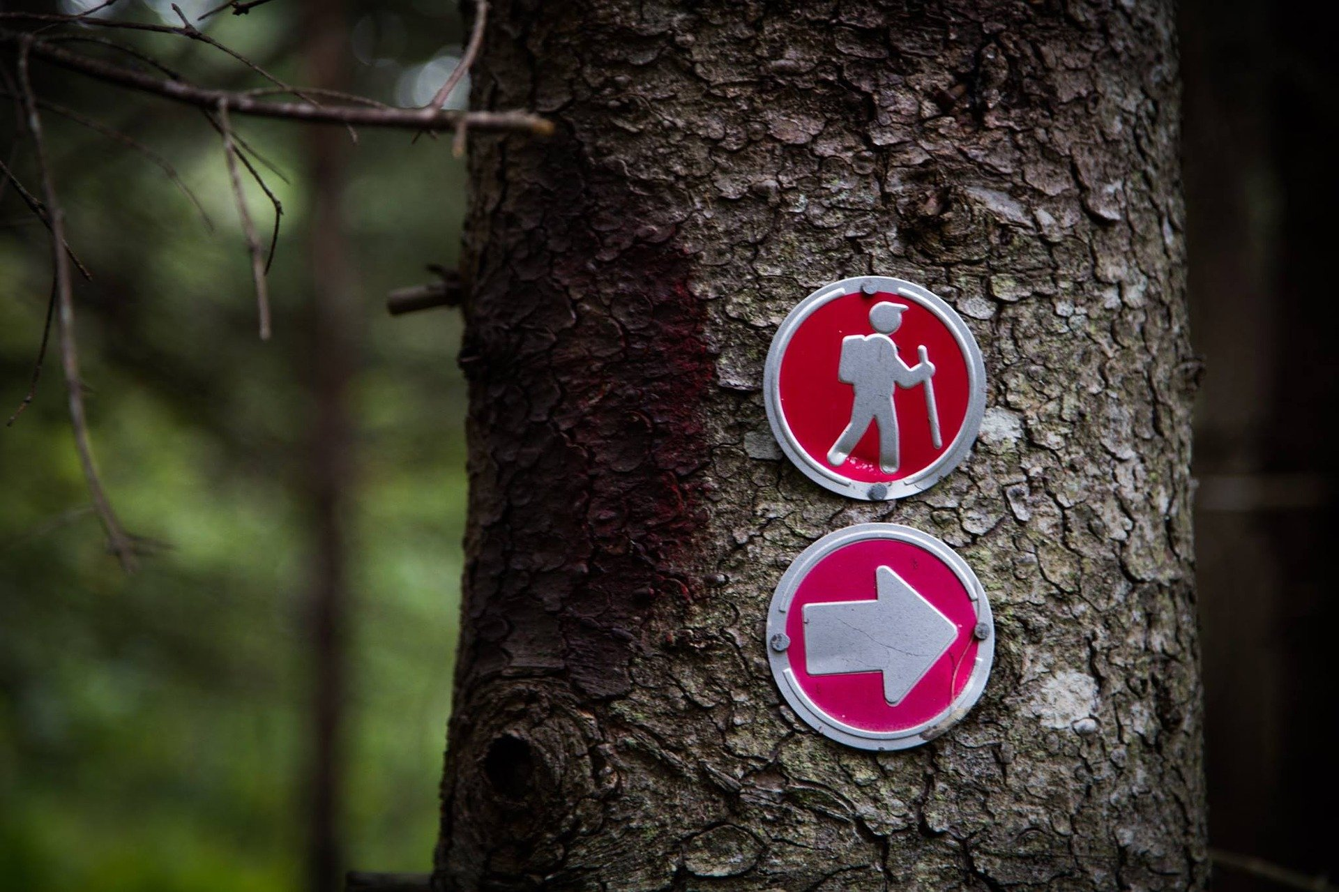 Manuale Trekking: camminare