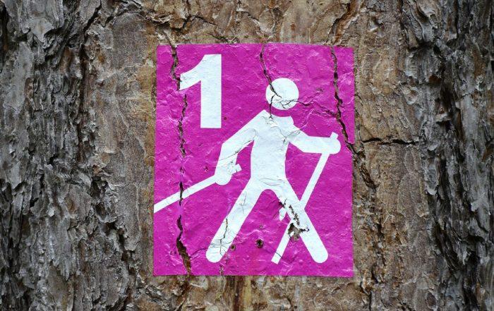 Attrezzatura Nordic Walking