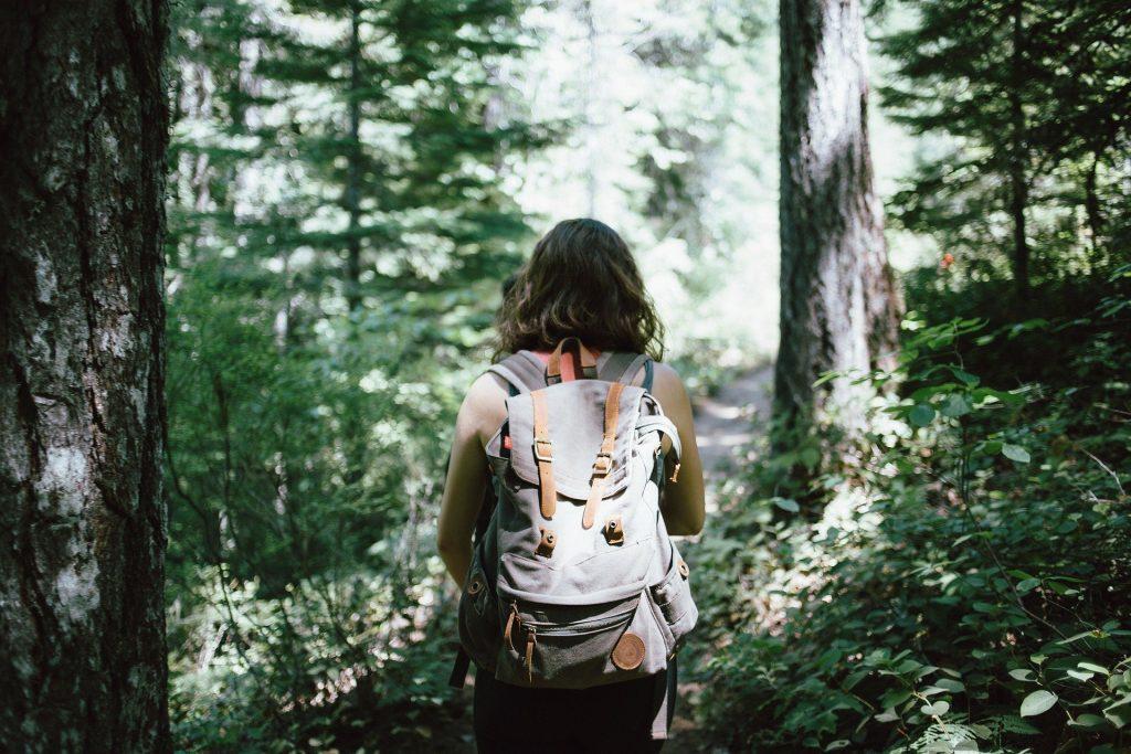 Cosa bere quando si cammina in montagna: quanto bere