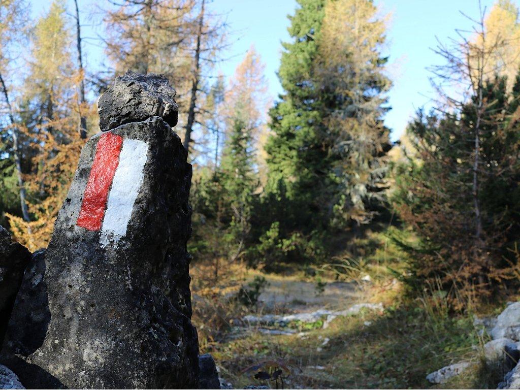 Monte Campigoletti escursione