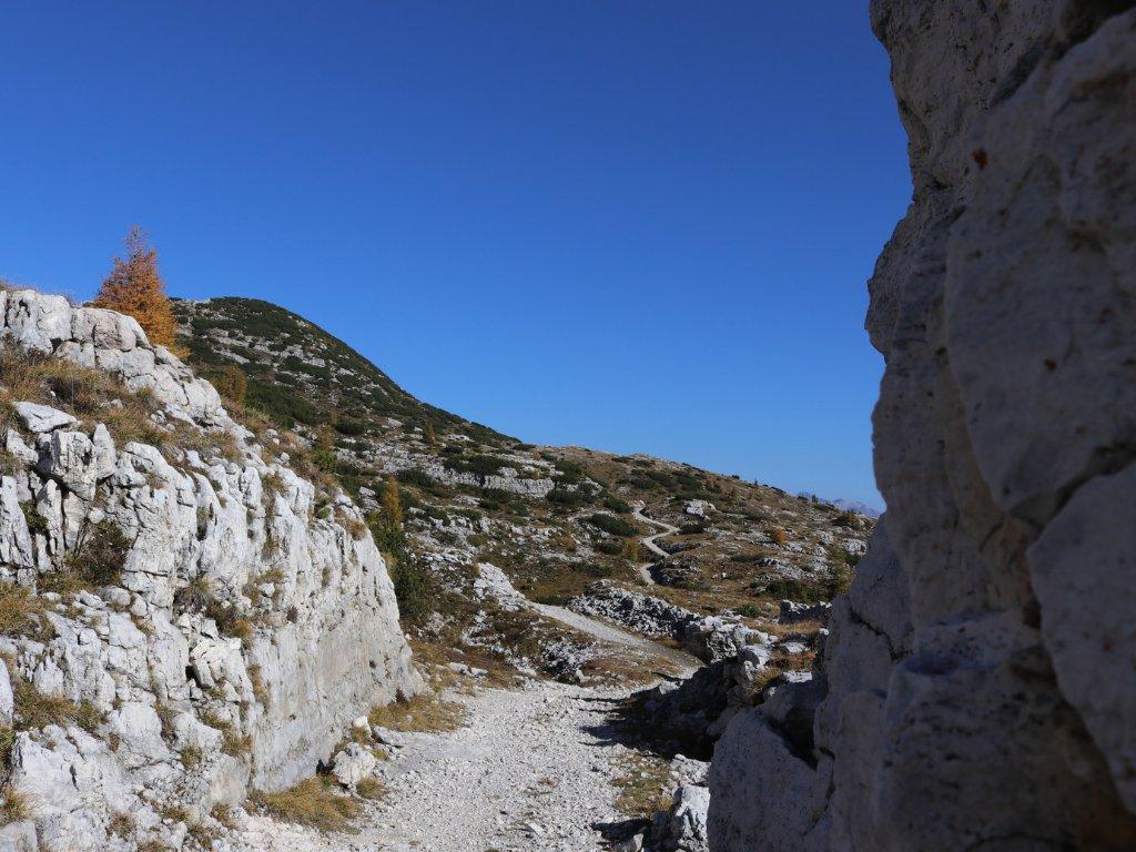 Monte Campigoletti: itinerario