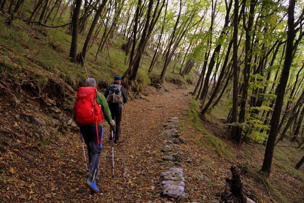 Camminare in Montagna: allenamento