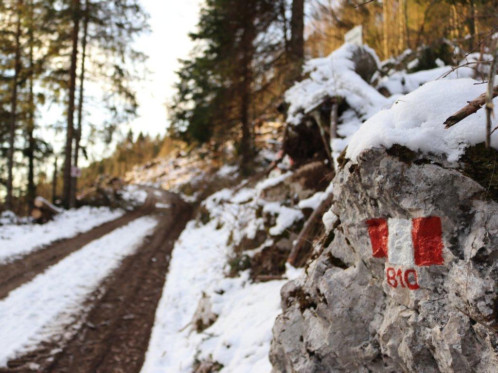 forte-campolongo-itinerario-sentiero