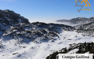 Campo Gallina
