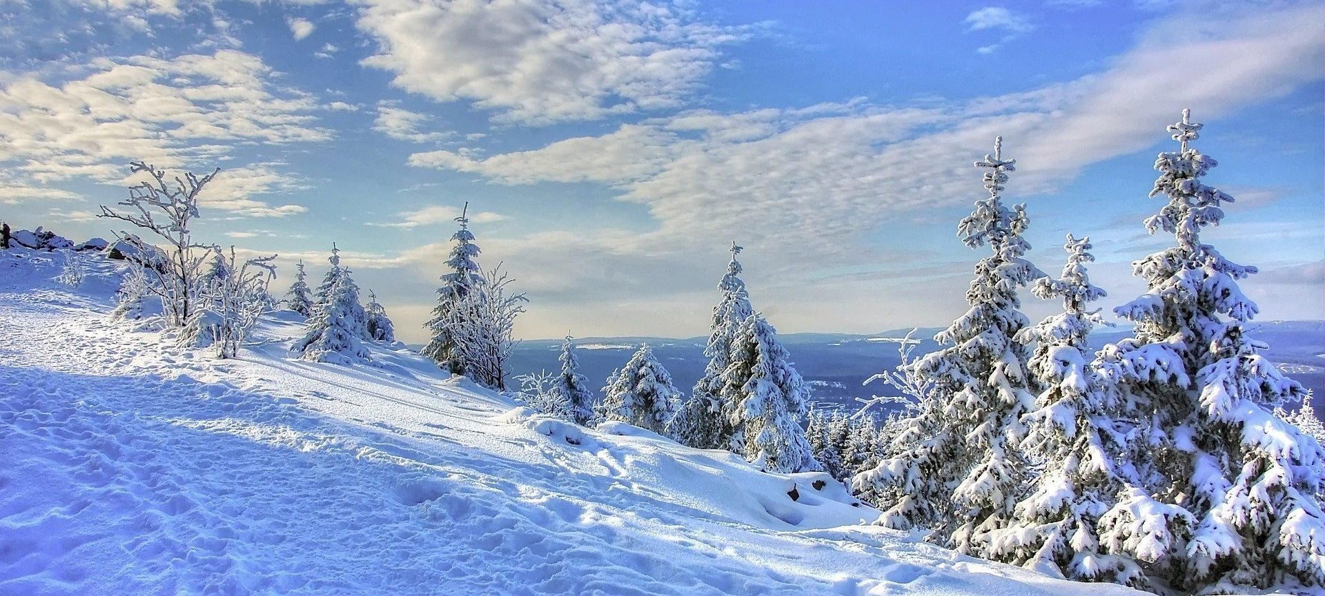 scarponi per camminare sula neve